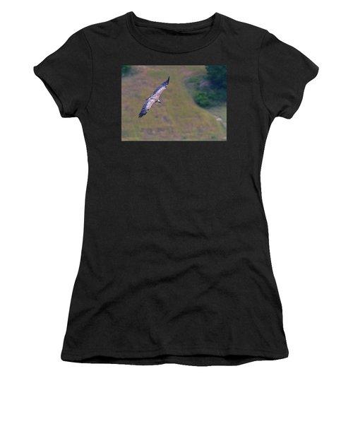 Griffon Vulture Flying, Drome Provencale, France Women's T-Shirt (Athletic Fit)