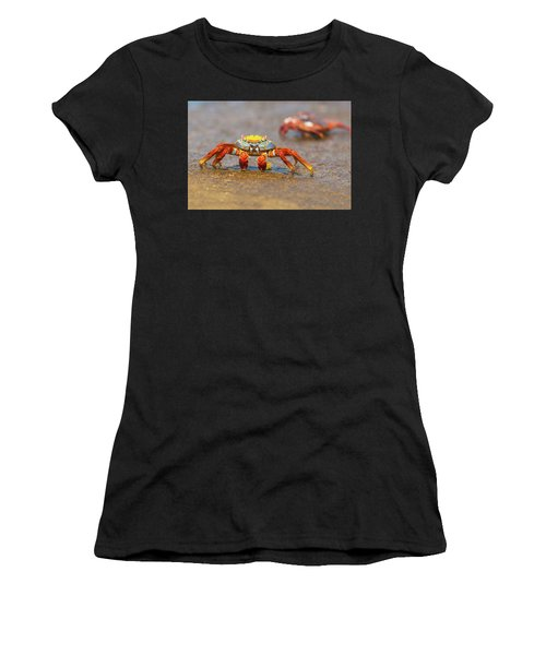 Sally Lightfoot Crab On Galapagos Islands Women's T-Shirt (Athletic Fit)