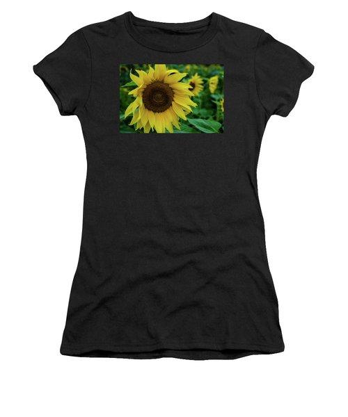 Sunflower Fields Women's T-Shirt