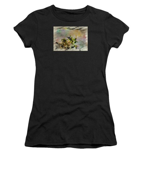 White Breasted Nuthatch Women's T-Shirt (Athletic Fit)