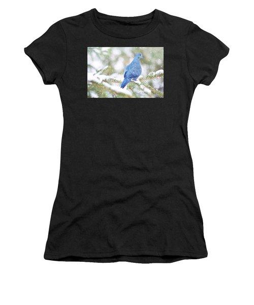 Winter Birds Women's T-Shirt