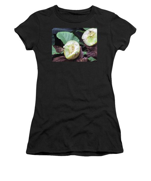 Butterfly Buffet Women's T-Shirt (Athletic Fit)