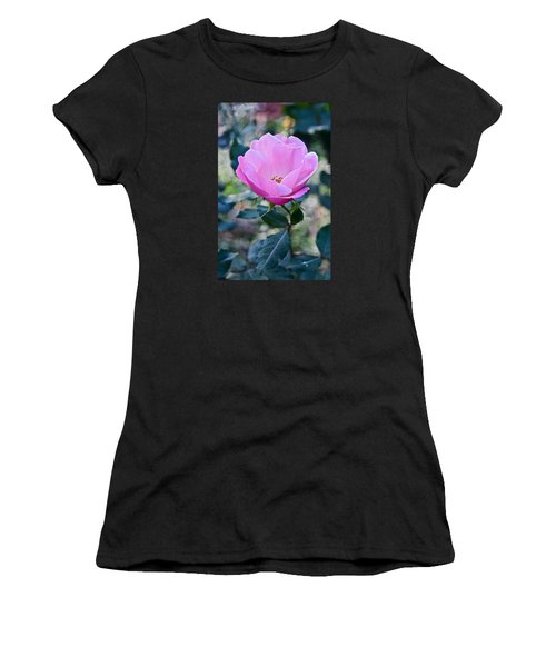 2015 After The Frost At The Garden Pink  Rose Women's T-Shirt