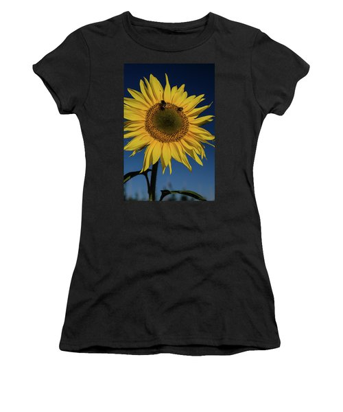 Sunflower Fields Women's T-Shirt