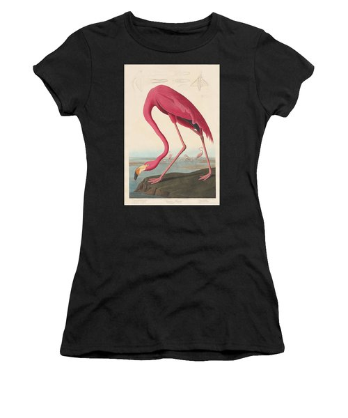 American Flamingo Women's T-Shirt