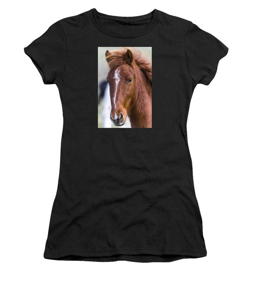 A Chestnut Horse Portrait Women's T-Shirt