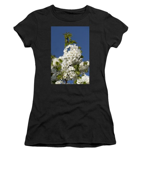 A Cluster Of Cherry Flowers Blossoming In The Springtime Women's T-Shirt