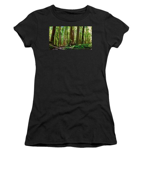 A Family Of Redwoods Panorama Women's T-Shirt