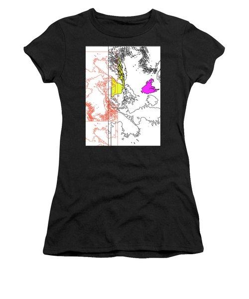 A Map Of Irises Women's T-Shirt