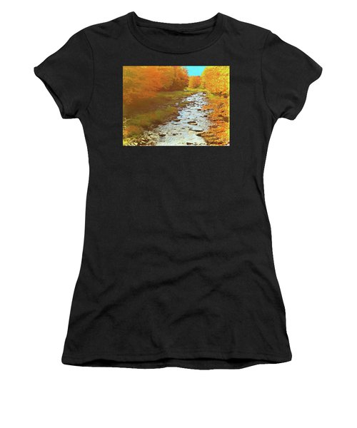 A Small Stream Bright Fall Color. Women's T-Shirt