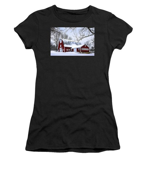 A Snowy Day At Grey Ledge Farm Women's T-Shirt