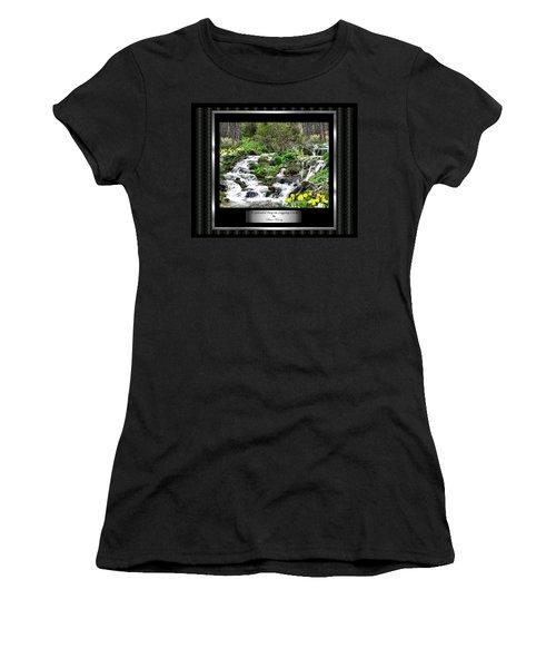 Women's T-Shirt (Junior Cut) featuring the photograph A Splendid Day On Logging Creek by Susan Kinney