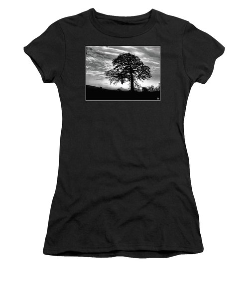 Acacia And Volcano Silhouetted Women's T-Shirt (Athletic Fit)