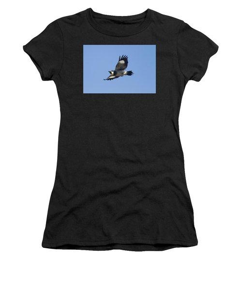 Acorn Woodpecker Women's T-Shirt