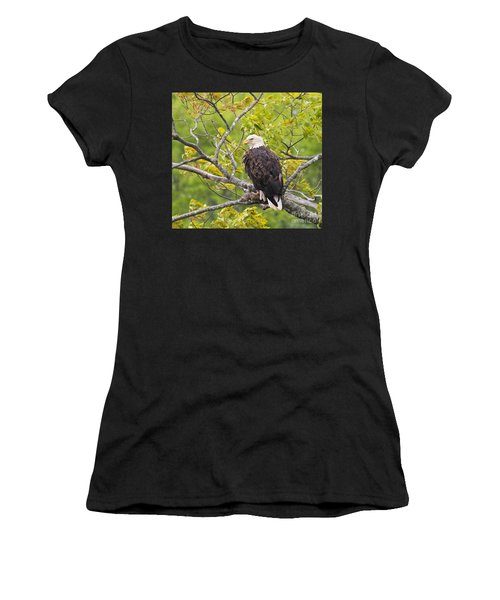 Adult Bald Eagle Women's T-Shirt