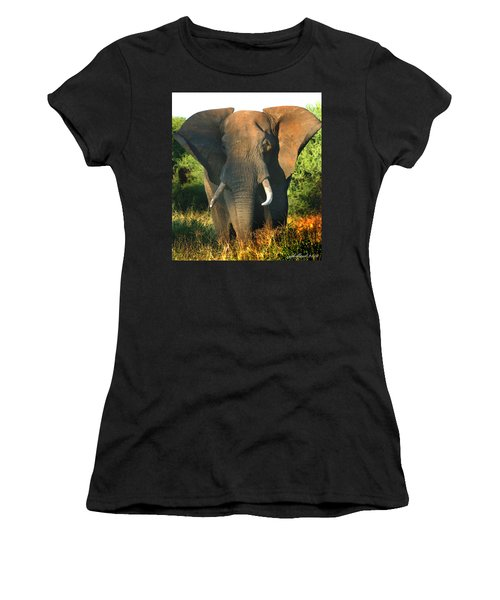African Bull Elephant Women's T-Shirt (Athletic Fit)