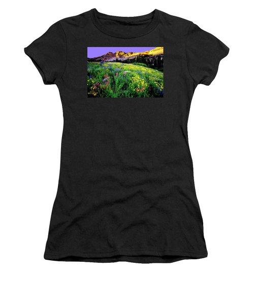 Albion Meadows Women's T-Shirt (Athletic Fit)