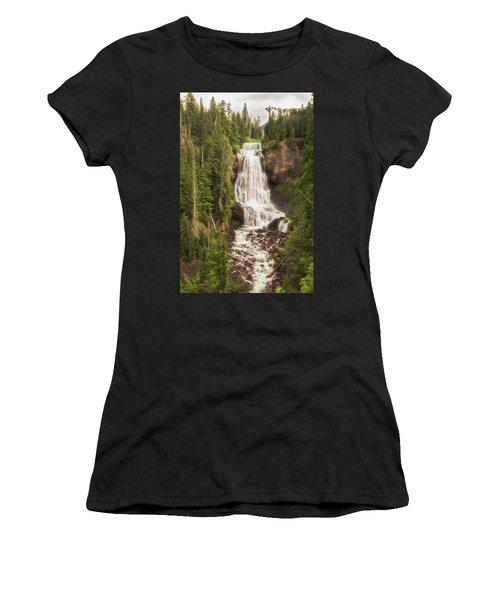 Alexander Falls Women's T-Shirt
