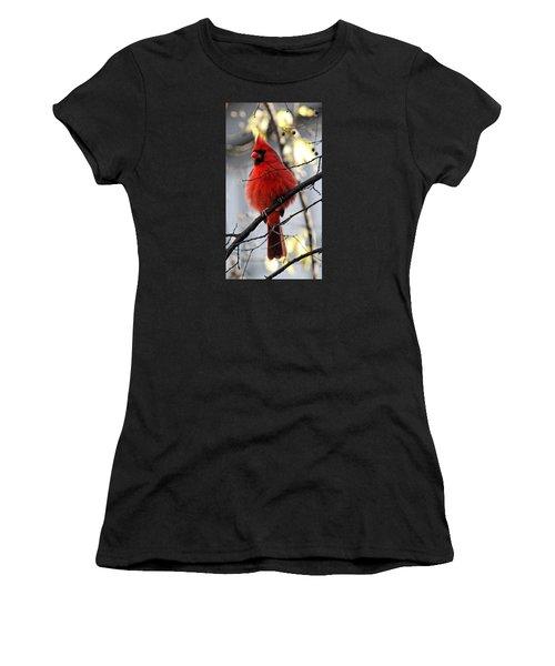 All Fluff Women's T-Shirt