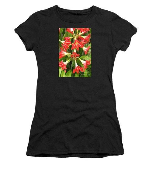 Amaryllis Lily Bunch Women's T-Shirt