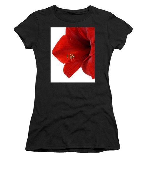 Amaryllis On White 3 Women's T-Shirt