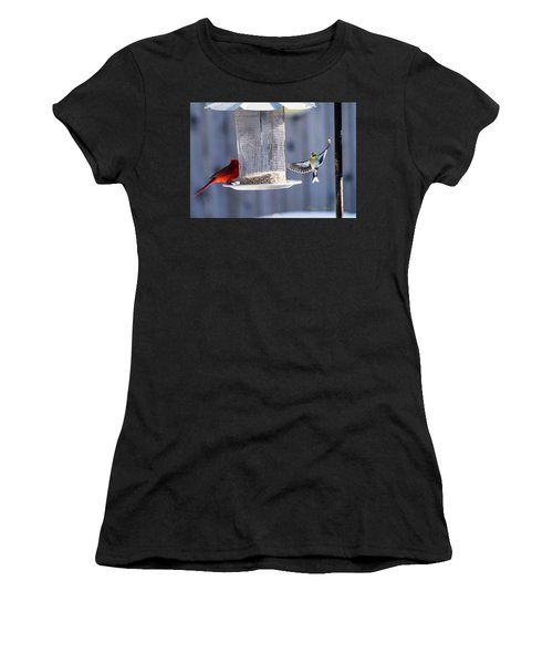 American Goldfinch Inbound Women's T-Shirt