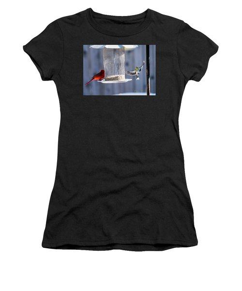 American Goldfinch Inbound Women's T-Shirt