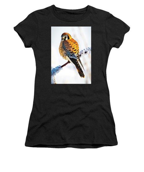 American Kestrel Women's T-Shirt