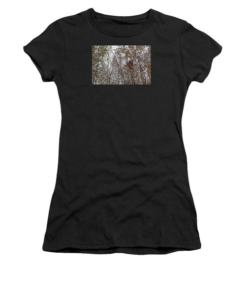 American Woodcock In October Foliage Women's T-Shirt