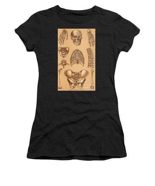 Anatomical Study Of The Human Skeleton, 1896 Women's T-Shirt