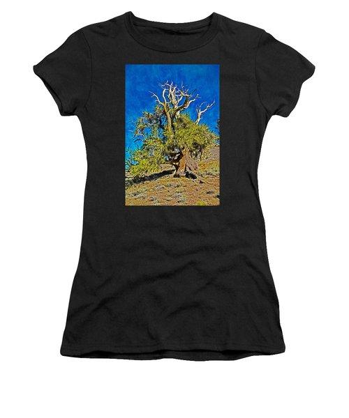 Ancient Bristlecone Pine Women's T-Shirt