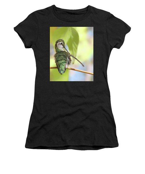 Anna's Hummingbird - Preening Women's T-Shirt