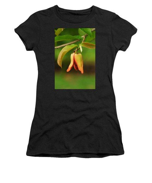 Annona Purpurea Flower Women's T-Shirt