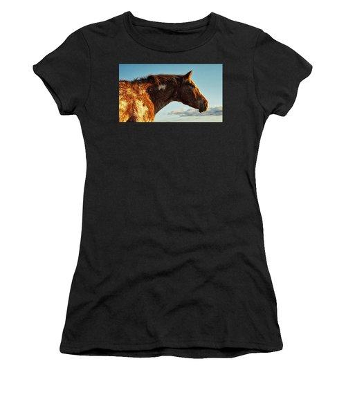 Appaloosa Mare Women's T-Shirt