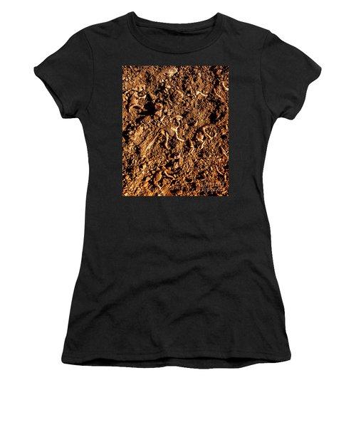 Art Of A Dinosaur Dig Women's T-Shirt