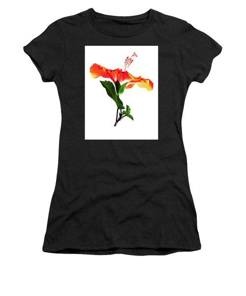 Art Orange Women's T-Shirt