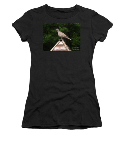 At The Top Of The Bird Feeder Women's T-Shirt (Athletic Fit)