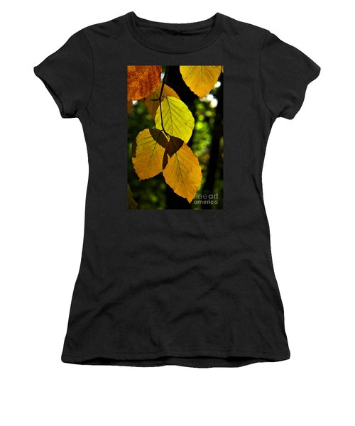 Autumn Beech Tree Leaves Women's T-Shirt