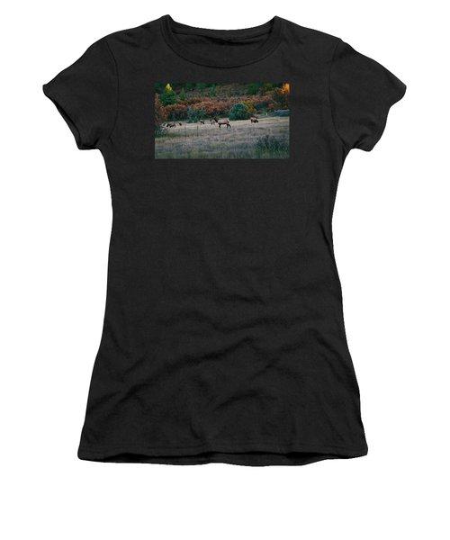 Autumn Bull Elk Women's T-Shirt