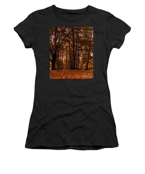 Autumn In Colligan Wood Women's T-Shirt