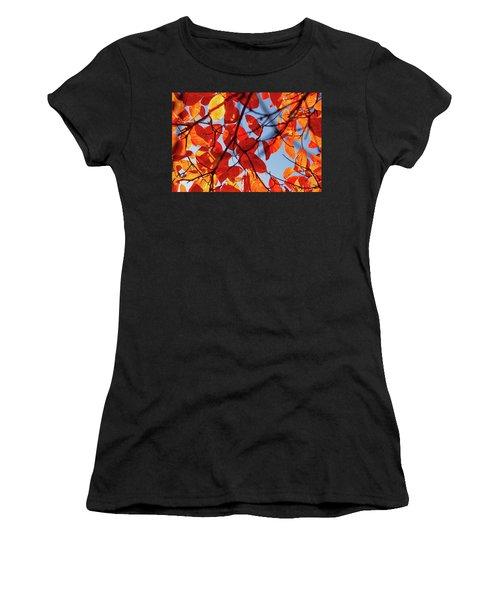 Autumn In The Arboretum Women's T-Shirt