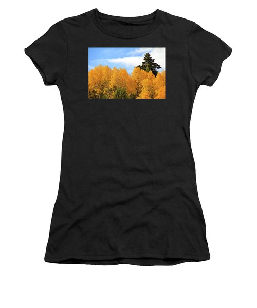 Autumn In The Owyhee Mountains Women's T-Shirt