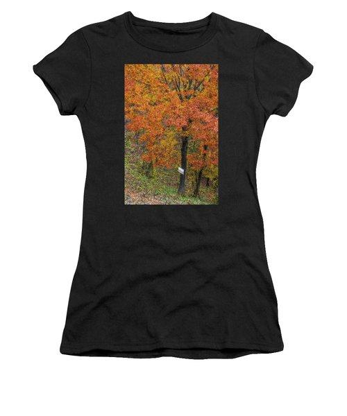 Autumn Tree Women's T-Shirt