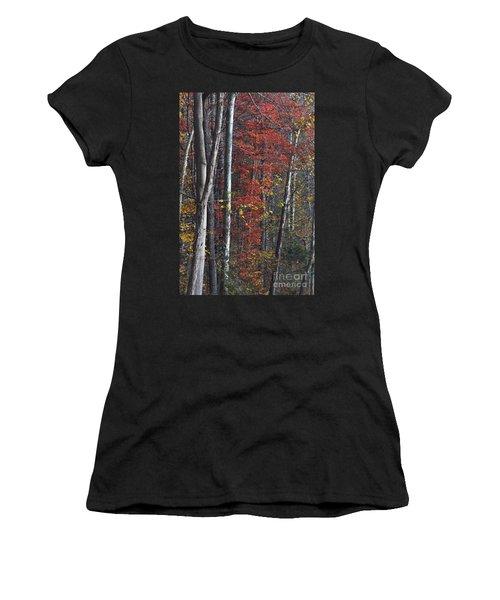 Autumn Trees 8261c Women's T-Shirt