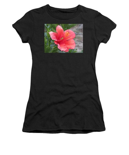 Women's T-Shirt featuring the photograph Baby Grasshopper On Hibiscus Flower by Nancy Nale