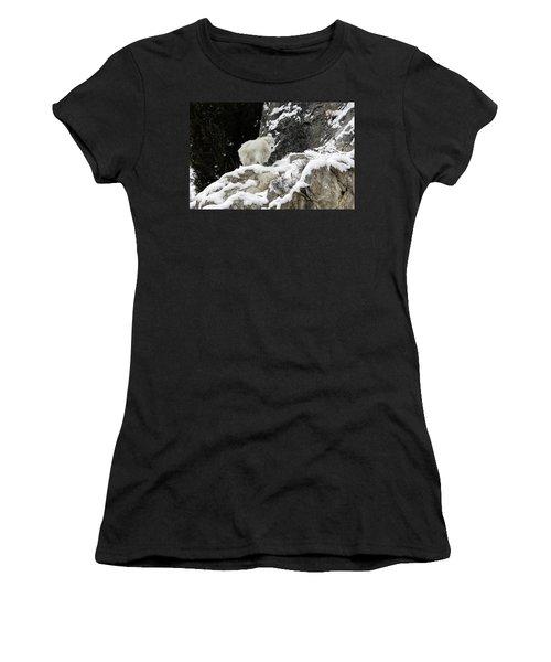 Baby Mountain Goat Women's T-Shirt