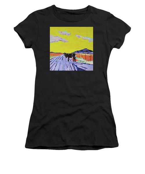 Backroads Abiquiu, New Mexico Women's T-Shirt (Athletic Fit)