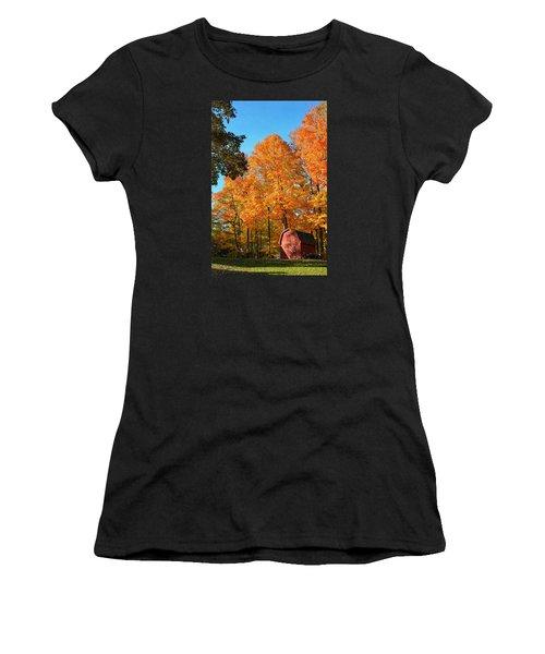 Backyard Beauty Women's T-Shirt (Junior Cut) by Nikki McInnes