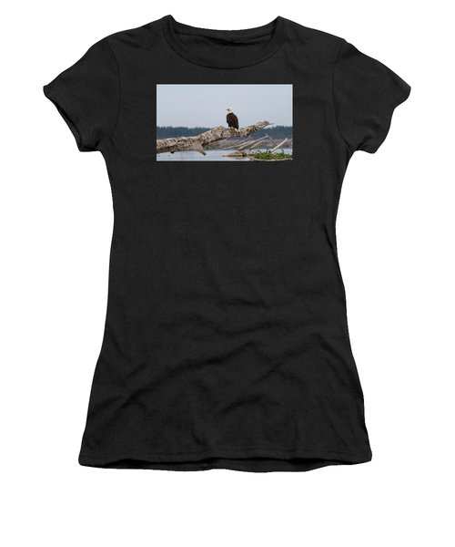 Bald Eagle #1 Women's T-Shirt