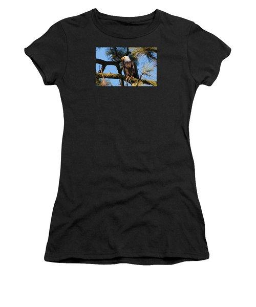 Bald Eagle Perch Women's T-Shirt
